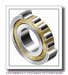 220 mm x 270 mm x 50 mm  SKF NNCF 4844 CV roulements à rouleaux cylindriques