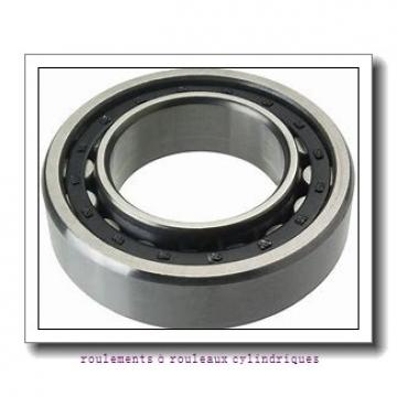 500 mm x 670 mm x 170 mm  ISO NNU49/500 V roulements à rouleaux cylindriques